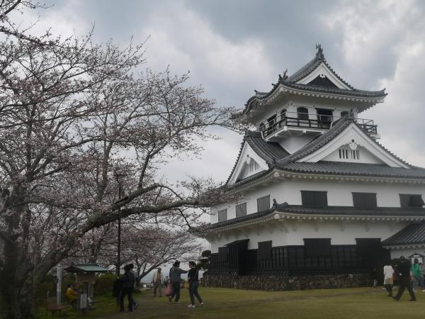 城山桜2016.4.1